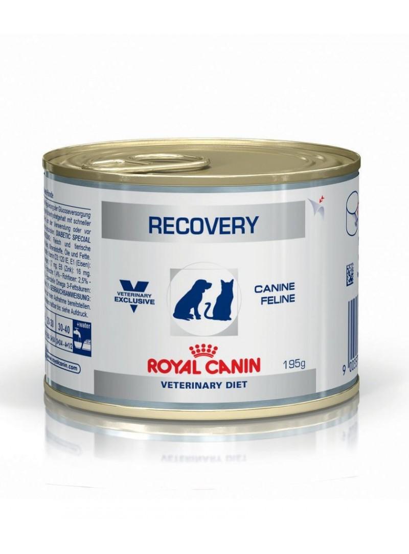 Royal Canin Recovery Cat/Dog-RCRECO195
